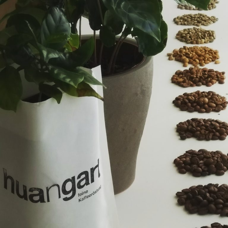 Workshop Kaffee Basics
